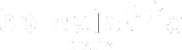 logo boleslavia